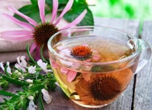 Чай от ехинацея