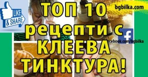 клеева тинктура топ 10 рецепти