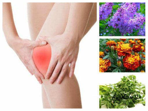 Артрит: 30+ начина за лечение с билки и народна медицина!
