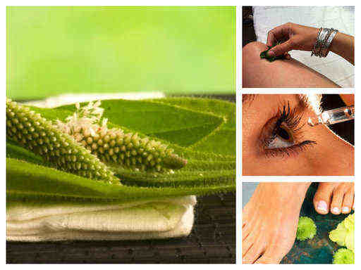 Живовляк – безценна билка и лек за куп болежки (ТОП рецепти)