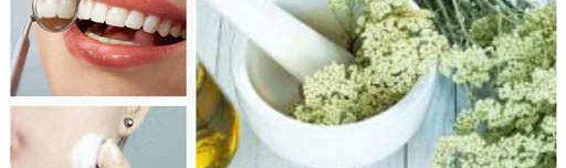 лечение с билката бял равнец