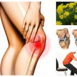 Всичко за мъчението, наречено гонартроза: лекарства, народна медицина, симптоми и стадии