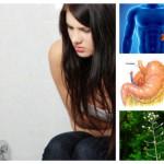 Болен далак – как да разпознаем проблема и как да се лекуваме (най-добрите билкови рецепти)