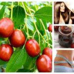 Изумителният хинап: Лек при диабет, кръвно, косопад, температура и още куп болежки