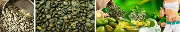 Зелено кафе, цена, за отслабване, Как да отслабна, в аптеките,