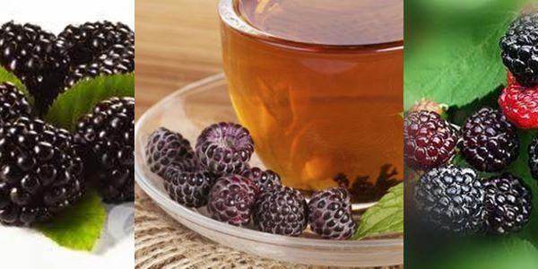 чай от къпина рецепта приготвяне